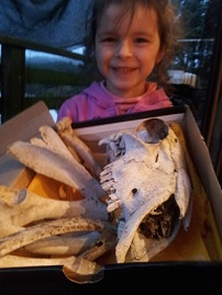 Lucy, with a selection of her favourite specimens from the Bone-gaining expedition